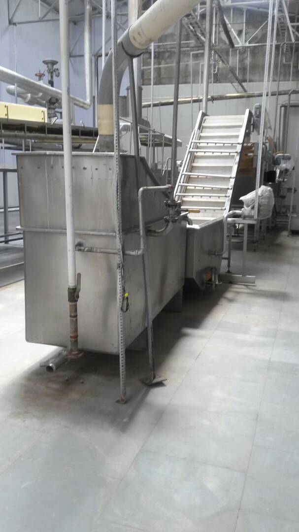 Frozen Green Peas Processing Line
