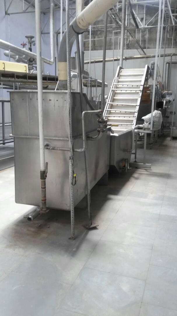 Frozen Green Peas Processing Line