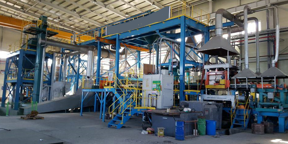 VULCAN Cast Iron Plant